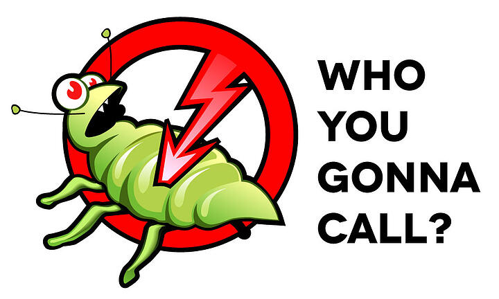 Who You Gonna Call? – Choosing a Pest Control Company