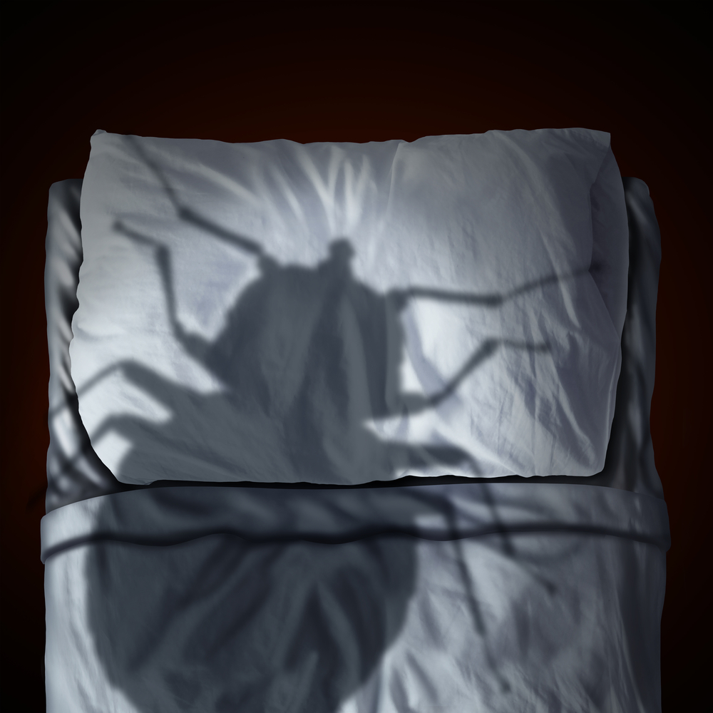 bed-bug-off-ridding-your-property-of-bed-bugs