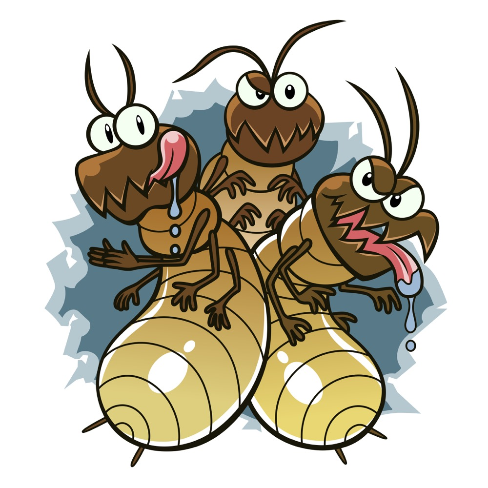 common-spring-pests-termites-ants